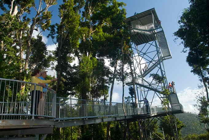 mamu-tropical-skywalk-observation-tower